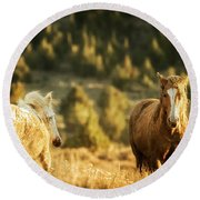 Two Mustangs Post Playtime At The Waterhole Round Beach Towel