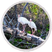 Two On A Tree Round Beach Towel