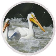 Two Pelicans At Horn Rapids Round Beach Towel