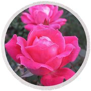 Two Pink Double Roses Round Beach Towel