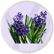 Two Purple Hyacinths Round Beach Towel