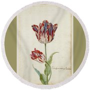 Two Red And White Tulips. Colombijn And Wit Van Poelenburg Round Beach Towel