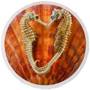 Two Seahorses On Seashell Round Beach Towel
