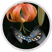 Two Spicebush Swallowtail Butterflies On A Turks Cap Lily Round Beach Towel