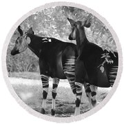 Two Stipers In Black And White Round Beach Towel