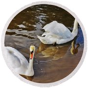 Two Swans On Spring Water Round Beach Towel