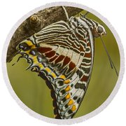 Two Tailed Pasha Butterfly Round Beach Towel