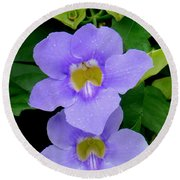 Two Thunbergia With Dew Drops Round Beach Towel