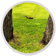 Two Trees And A Squirrel Round Beach Towel