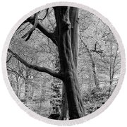 Two Trees In Spring - Mono Round Beach Towel