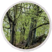 Two Trees In Springtime Round Beach Towel