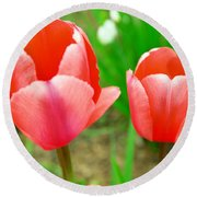 Two Tulips In Bloom  Round Beach Towel