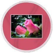 Two Unopen Pink Hibiscus Flowers Round Beach Towel