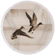 Two Winter Ducks In Flight Round Beach Towel