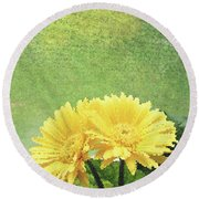 Two Yellow Gerber Daisies Round Beach Towel