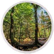 U Shaped Trees Cascade Mountain Ny New York Round Beach Towel