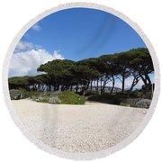 Umbrella Pine, Lerins Island Round Beach Towel