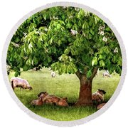 Umbrella Tree Round Beach Towel