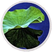 Under The Lily Pad Round Beach Towel