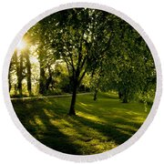 Under The Trees Round Beach Towel