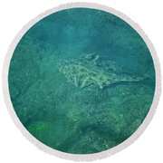 Under Water View Round Beach Towel