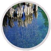 Underwater Cypress Stump Round Beach Towel