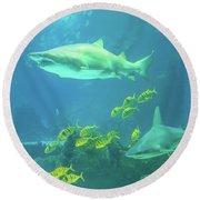 Underwater Shark Background Round Beach Towel