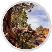 Unique Desert Beauty At Kodachrome Park In Utah Round Beach Towel