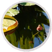 Unopened Water Lily And Reflections Round Beach Towel