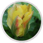 Unusual Yellow Tulip With Dew On The Petals Round Beach Towel