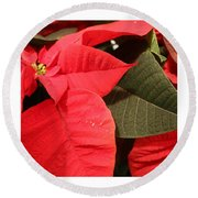 Up Close And Personal Poinsettia  Round Beach Towel