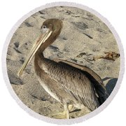 Up Close With A Pelican On A Sand Beach Round Beach Towel