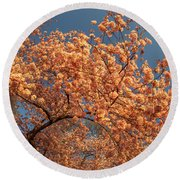 Up To The Cherry Flowers Round Beach Towel