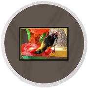 Upside Down Oriole Round Beach Towel