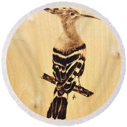 Upupa Round Beach Towel by Ilaria Andreucci