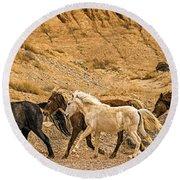 Ute Mountain Wild Horses On The Run Round Beach Towel