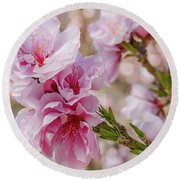 Valley Blossoms Round Beach Towel