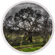 Valley Oak Round Beach Towel