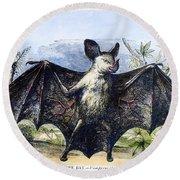 Vampire Bat Round Beach Towel