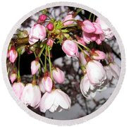 Vancouver Cherry Blossoms Round Beach Towel