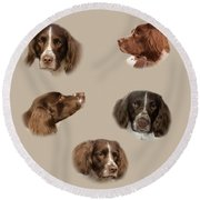 Variations Of A Spaniel Round Beach Towel