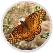 Variegated Fritillary Round Beach Towel