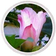 Variegated Hibiscus Flower In Circle Round Beach Towel