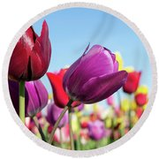 Velvet Red And Purple Tulip Flowers Closeup Round Beach Towel