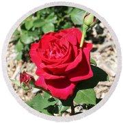 Velvet Red Rose Round Beach Towel