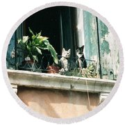 Venetian Cats Round Beach Towel