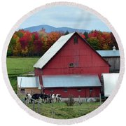 Vermont Cows At The Barn Round Beach Towel