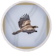 Vertical Eagle Triptych Round Beach Towel