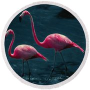 Very Pink Flamingos Round Beach Towel