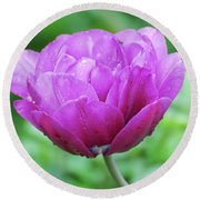 Very Pretty Lavender And Pink Tulip Blossom Flowering Round Beach Towel
